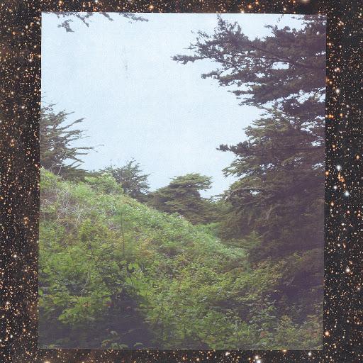 Jinsang - Trees.